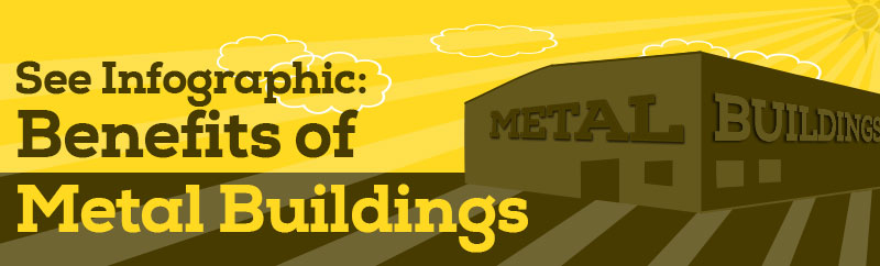 See Metal Building Infographic Widget